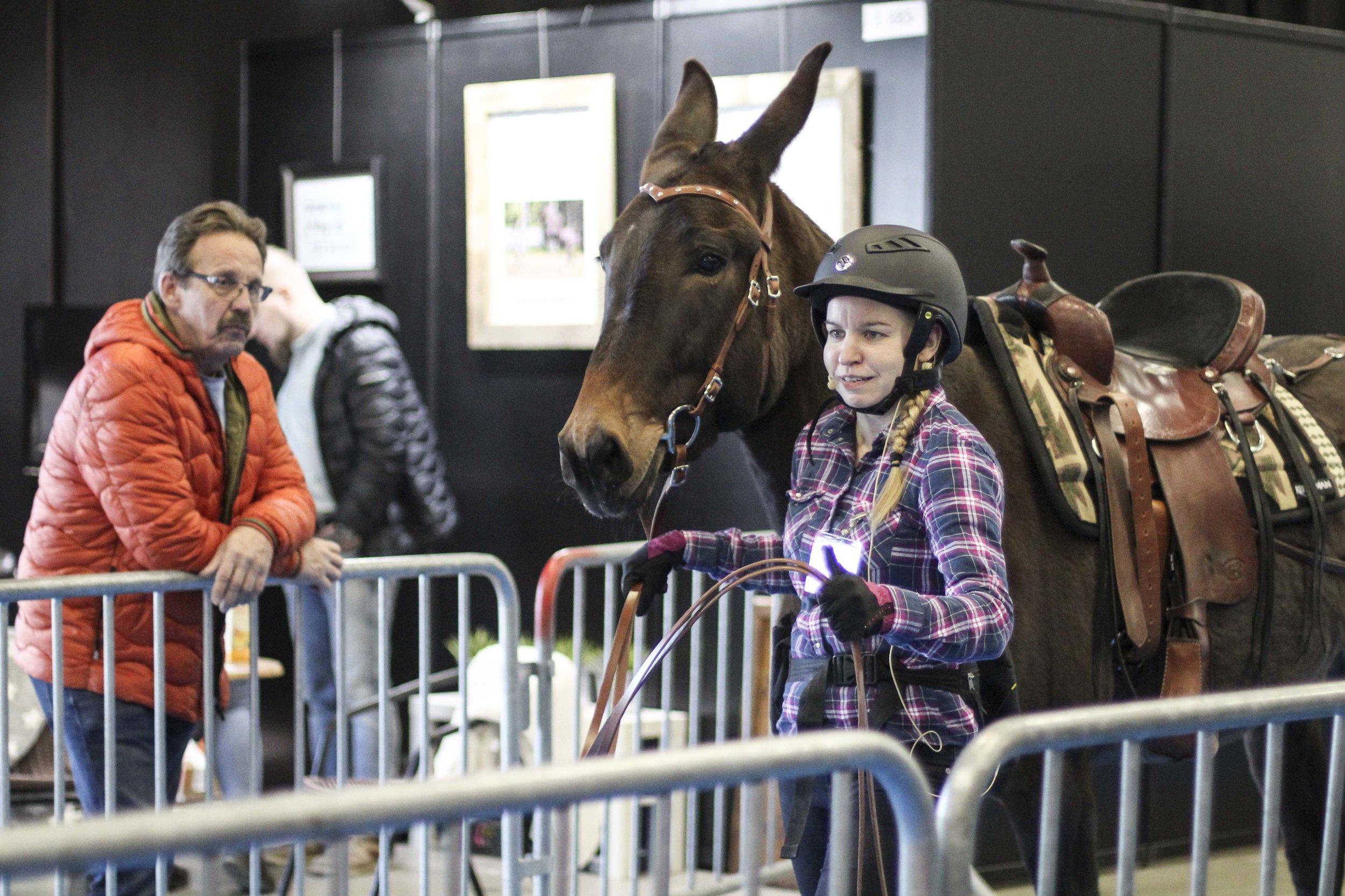 Kaisa & Muuli at the Horse Fair. Photo by Veera Kopakkala