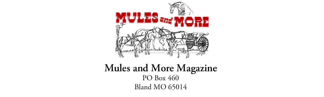 Mules and Donkey Classifieds — Mules and More Magazine