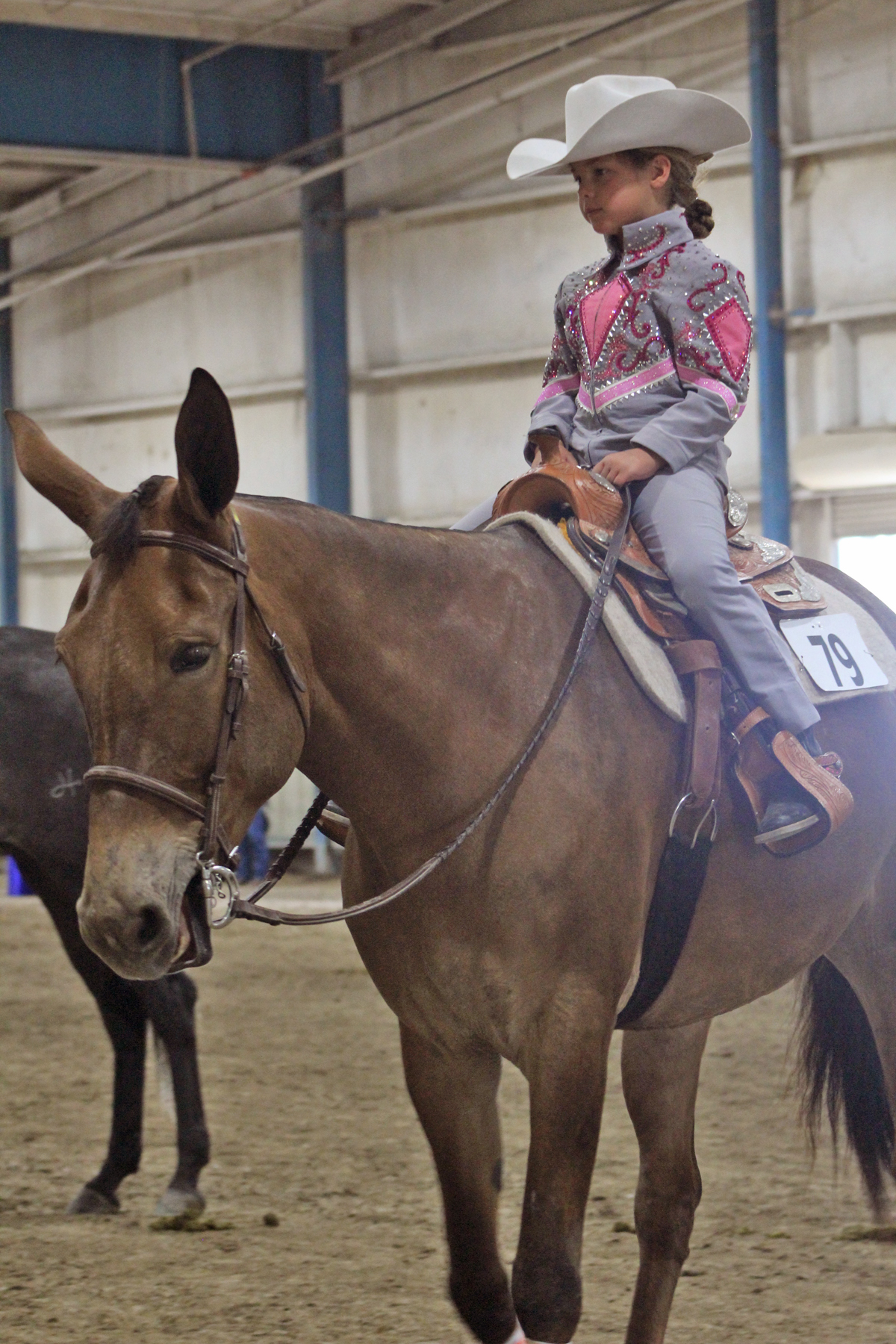 Great Celebration High Point Walk Trot 10 & Under Lilly Huckaby and Pistols and Posies