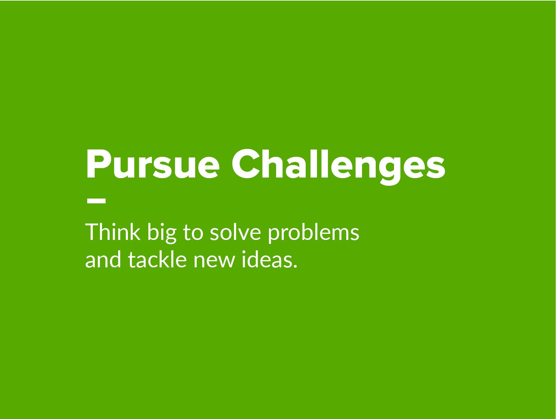 pursue_chall-01.jpg