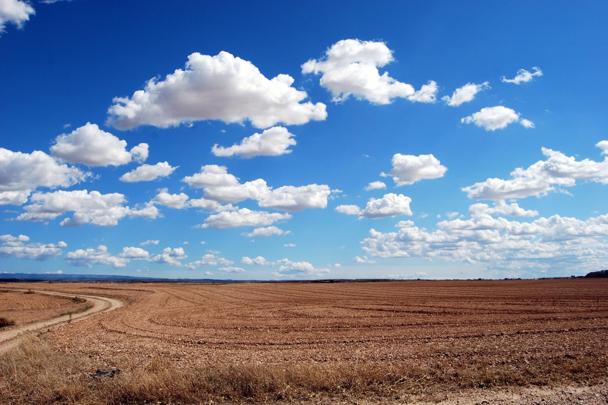 agriculture-arid-bright-46160.jpg