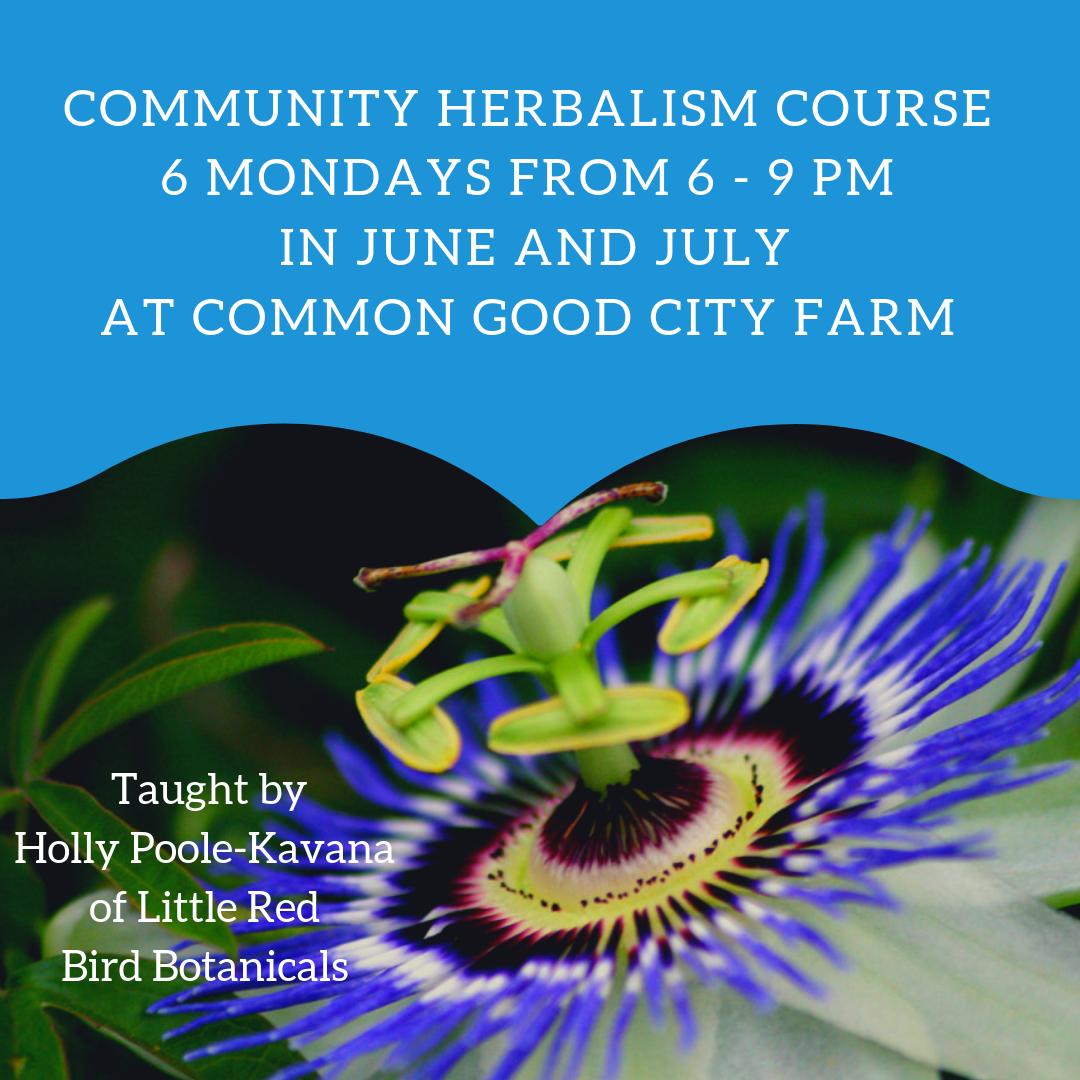 Community Herbalism.png