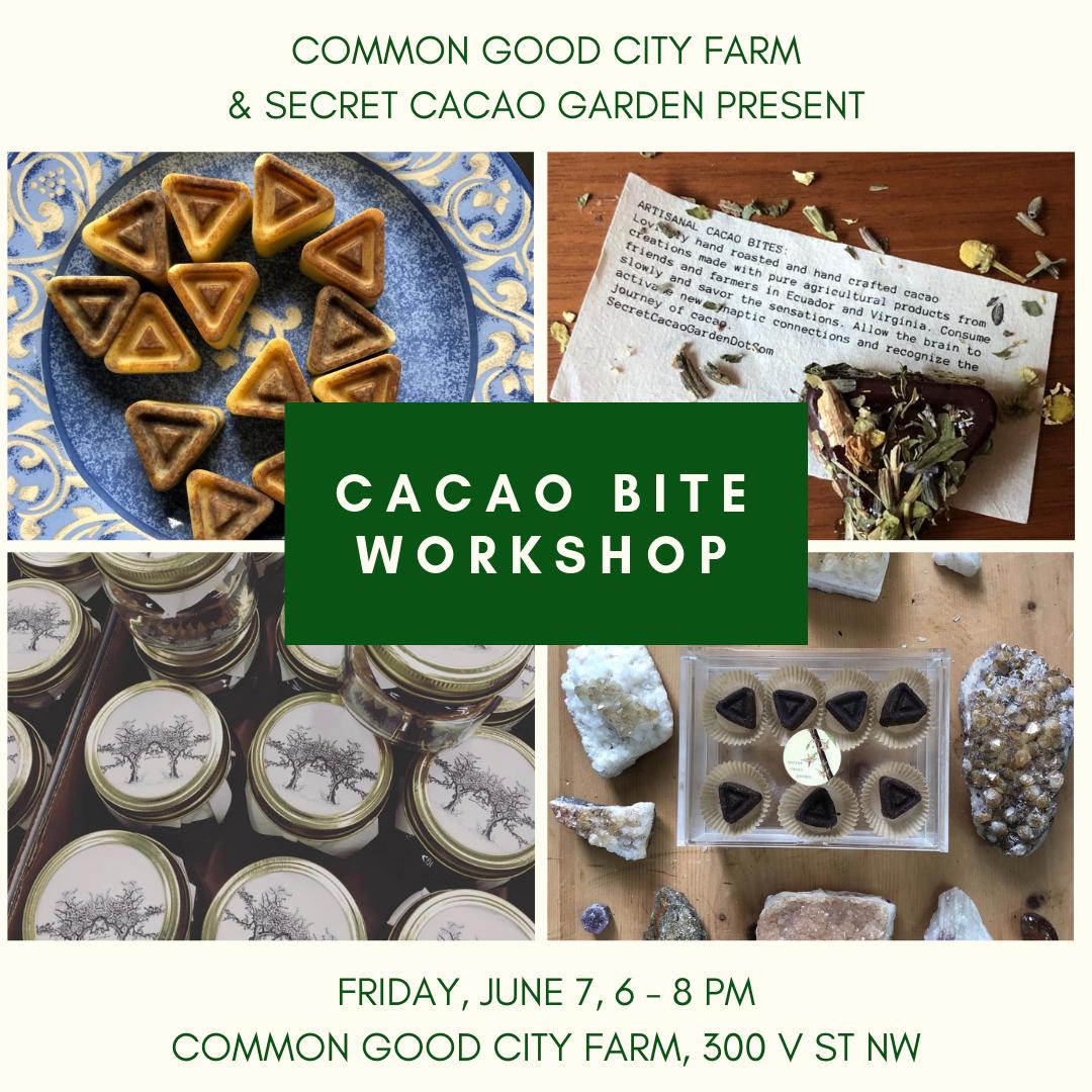 June 7 Chocolate workshop-2.png