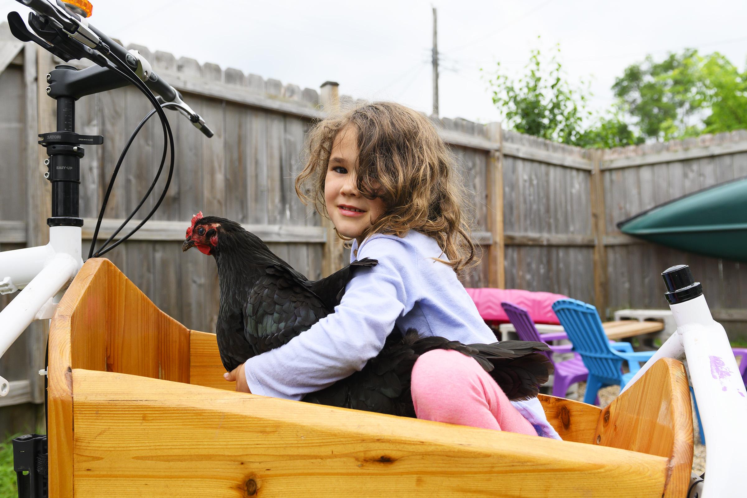 chickens005.jpg