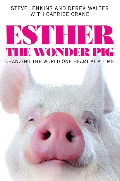 Esther The Wonder Pig,How To Get Oil Stains Out Of Clothes With Baking Soda
