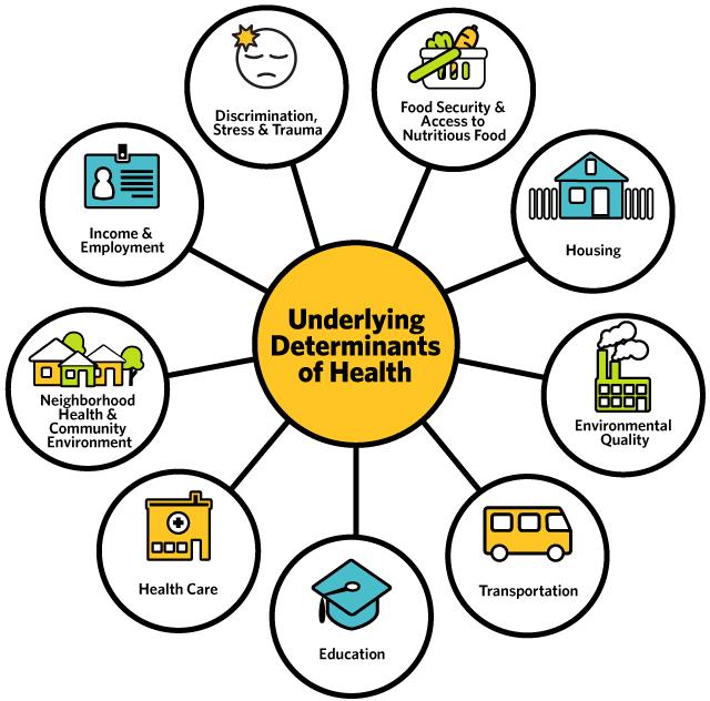 Underlying-Determinants-of-Health-cropped.jpg