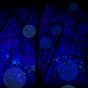 Late-Night-Fairy-Flight-by-Diamante-Lavendar-300x300.jpg