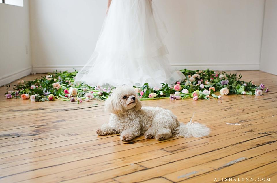 Toronto Portrait and Wedding Photographer, Alisha Lynn Photography_0790
