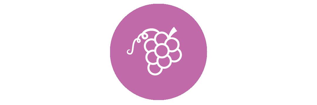 GrapeIcon2-01.png