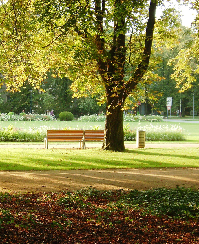 $2,799 Towards Improving Our Parks -