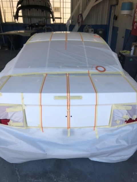 White Ford Mustang Custom Trunk Pin Stripe Paint