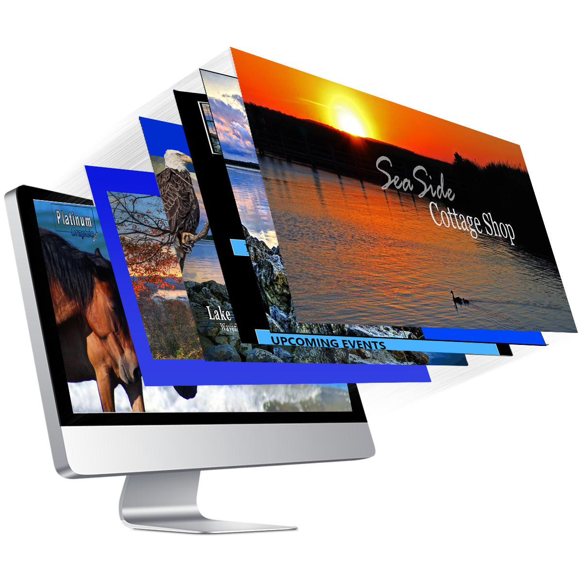 Website Design & Maintenance    Digital Marketing    Graphic Design    Social Media