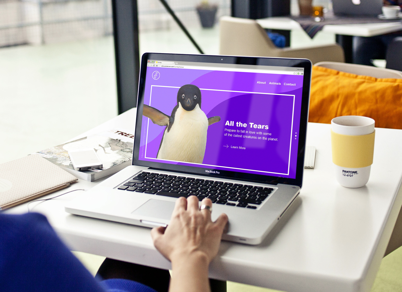 penguin_sitemockup.jpg