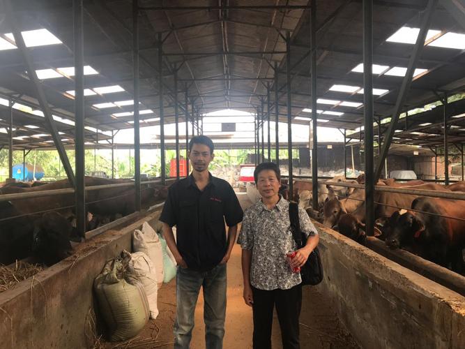 Pak Khoirul and Christie Chang at the fattening pen, PT Pasir Tengah, Widodo Maksur Perkasa, Cianjur, West Java.