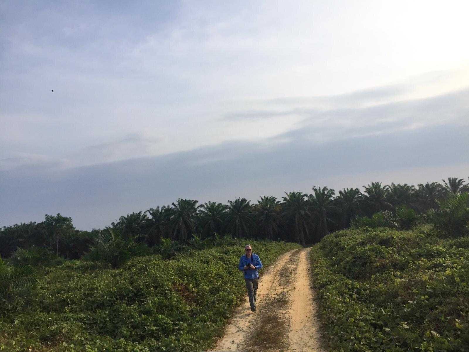 Mr Arthur Cameron completing pasture yield assessment, South Sumatra, August 2019.  Photo: Kieren McCosker