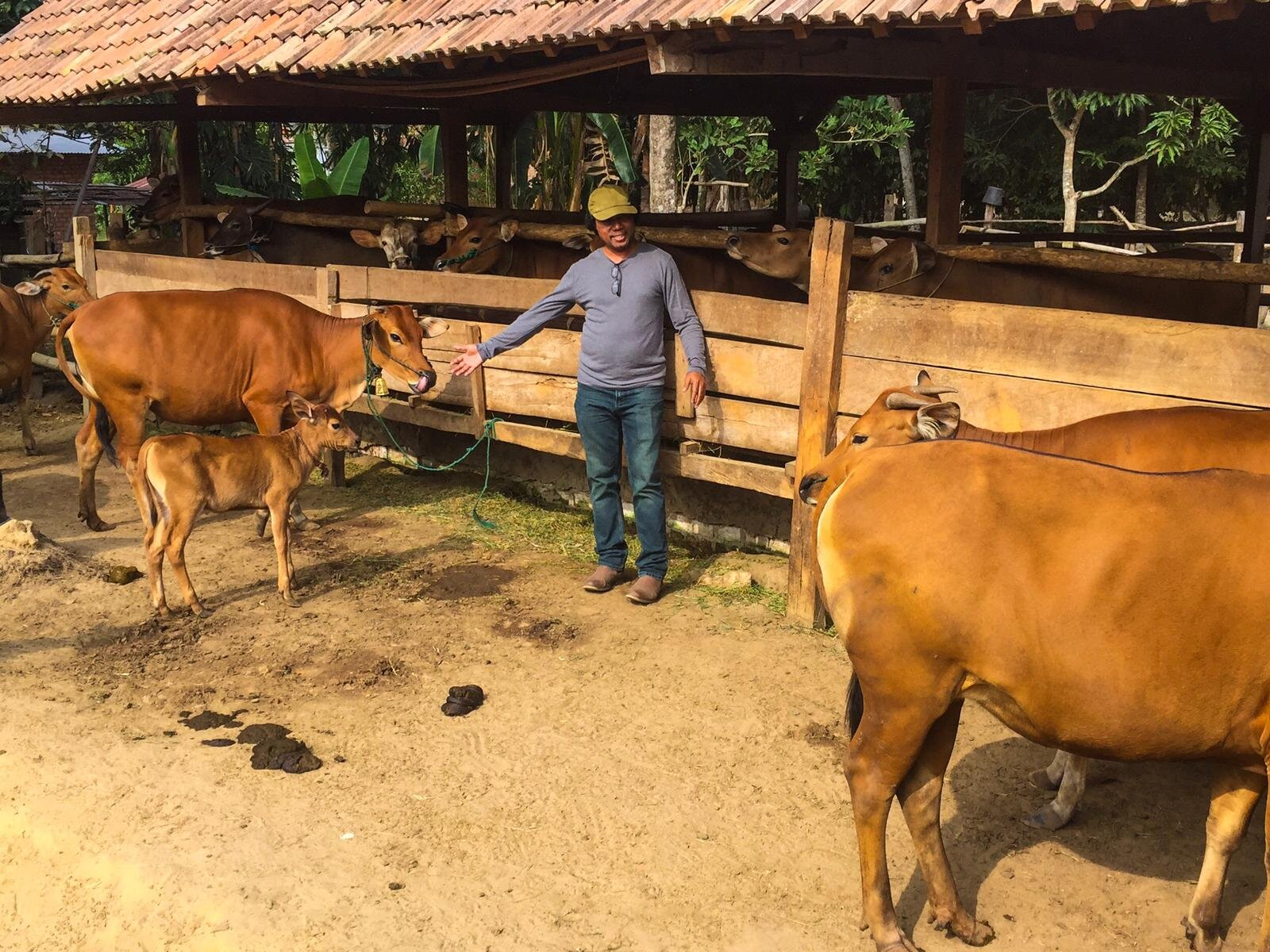 Mr Alipio de Almeida pictured during animal enrolment activity in South Sumatra, August 2019.  Photo: Kieren McCosker