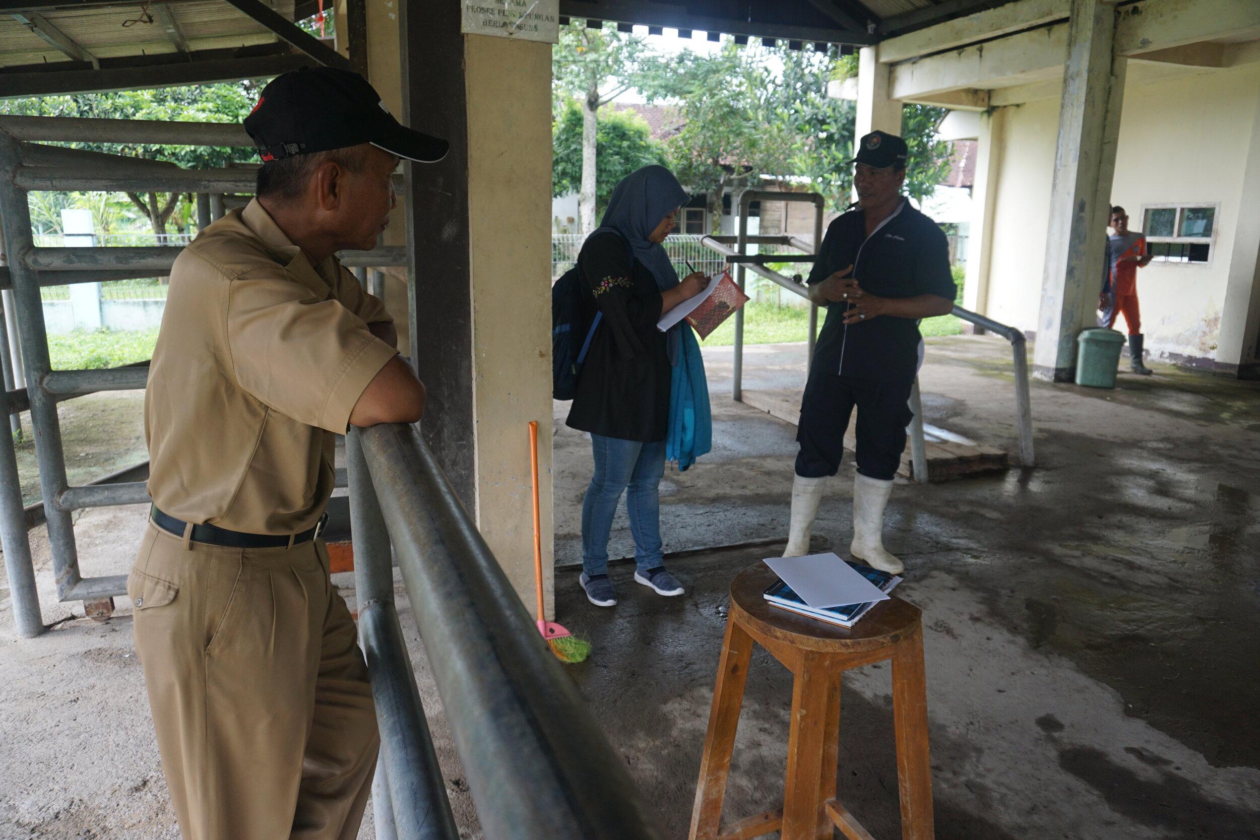 Interviewing staff of 'Banyumulek'.  Photo: Febri Ariyanti