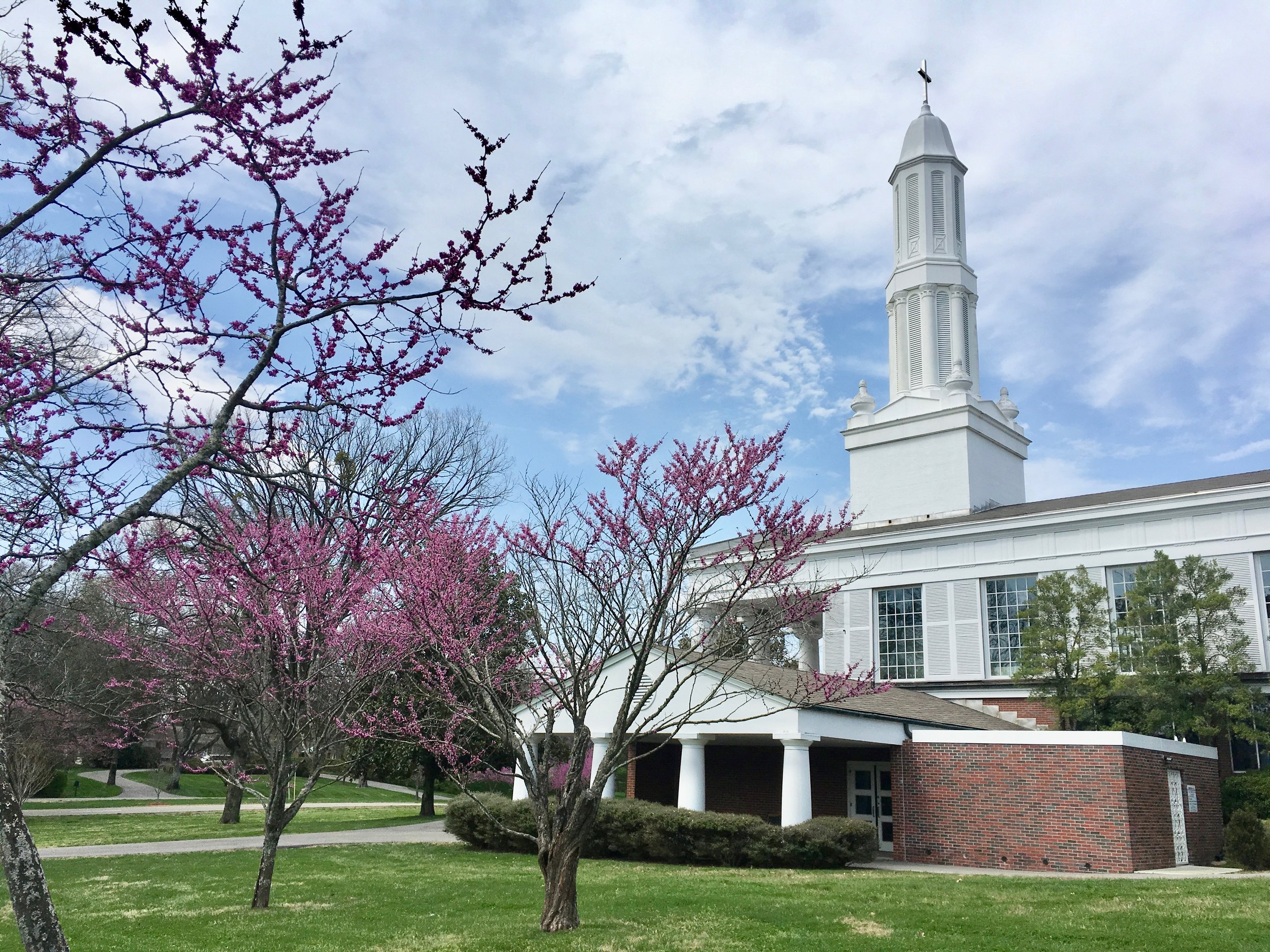 Immanuel in the Spring