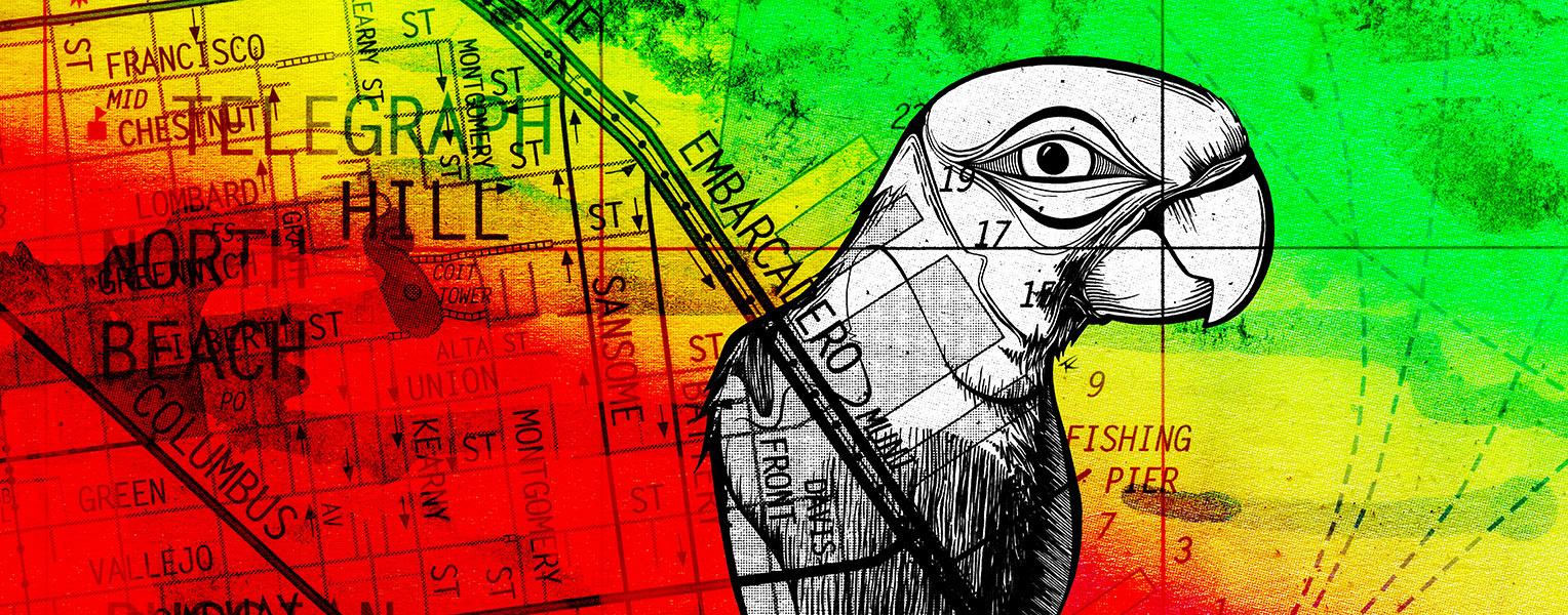 Telegraph Parrot