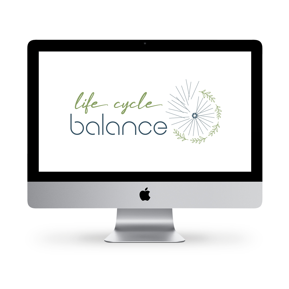 Life Cycle Balance Computer Mockup