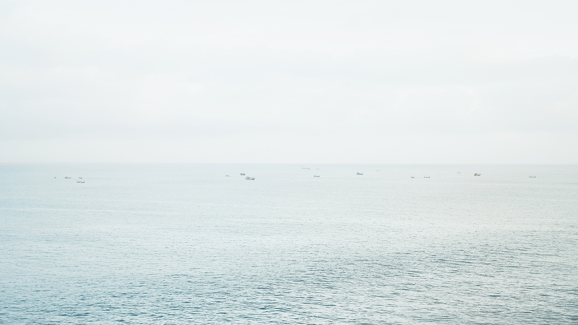 SeaboatsWEB.jpg