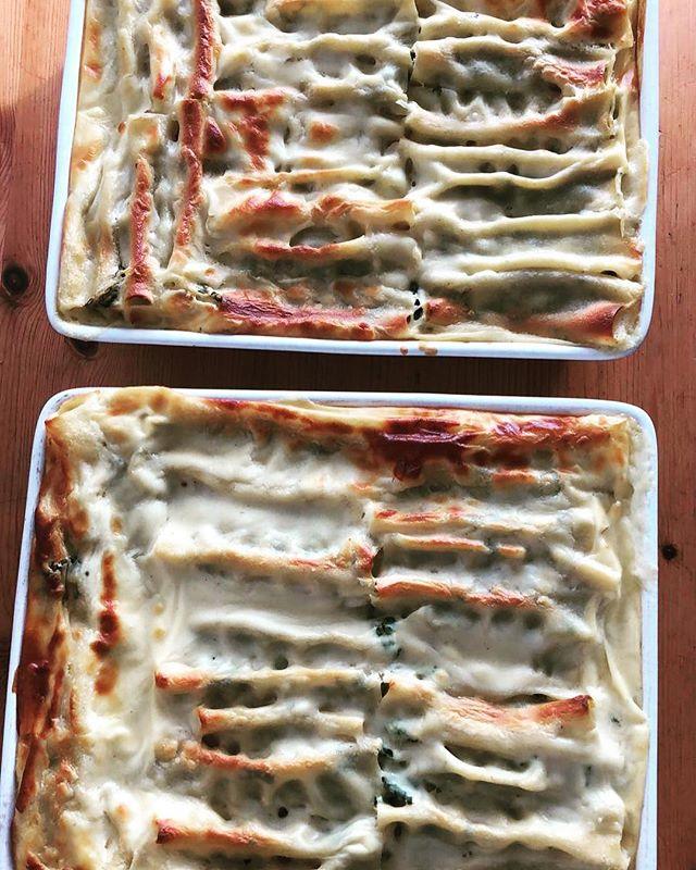 Monday special Ricotta spinach cannelloni#golbornemarket #foodie #brunch #lunch #golborneroad #golbornedeli #notinghill #cannelloni #monday #rain by @alessandrocolli88