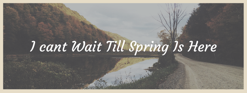 Tell me what you are looking forward to about Spring. -