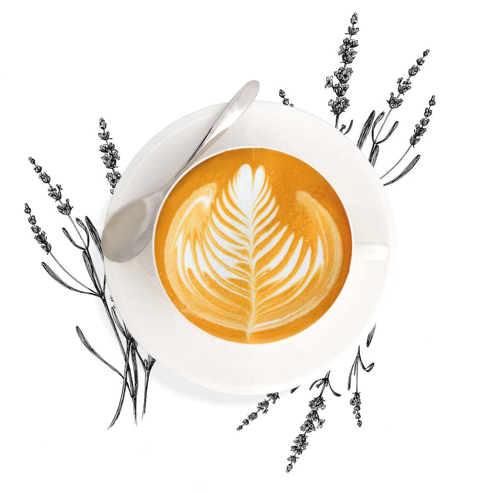 lattee.jpg
