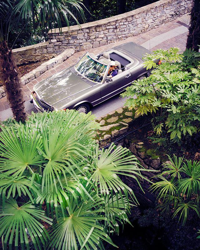 Welcome to the Jungle 🌴 . . . . #roadtrip #roadtripdiary #timetraveler #x1d #travelbloggeraustria #igersaustriaontour #roadtripping #mercedesclassic #mbfanphoto #mbclassic #oldbenz #drivetastefully #travelwithstyle #cartravel #carroadtrip #mbroadtrip #classiccartravel #sl560 #r107 #mercedessl #dametraveler #roadtripcouple #travelgirl #timetravelgirl #femaletravelblogger #wearetravelgirls #girlsthatwander #lakecomo #castadivaexperience #mbsocialcar