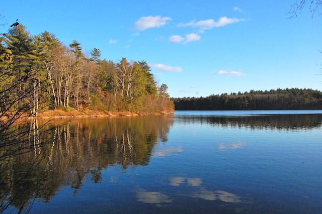 Walden Pond.jpeg