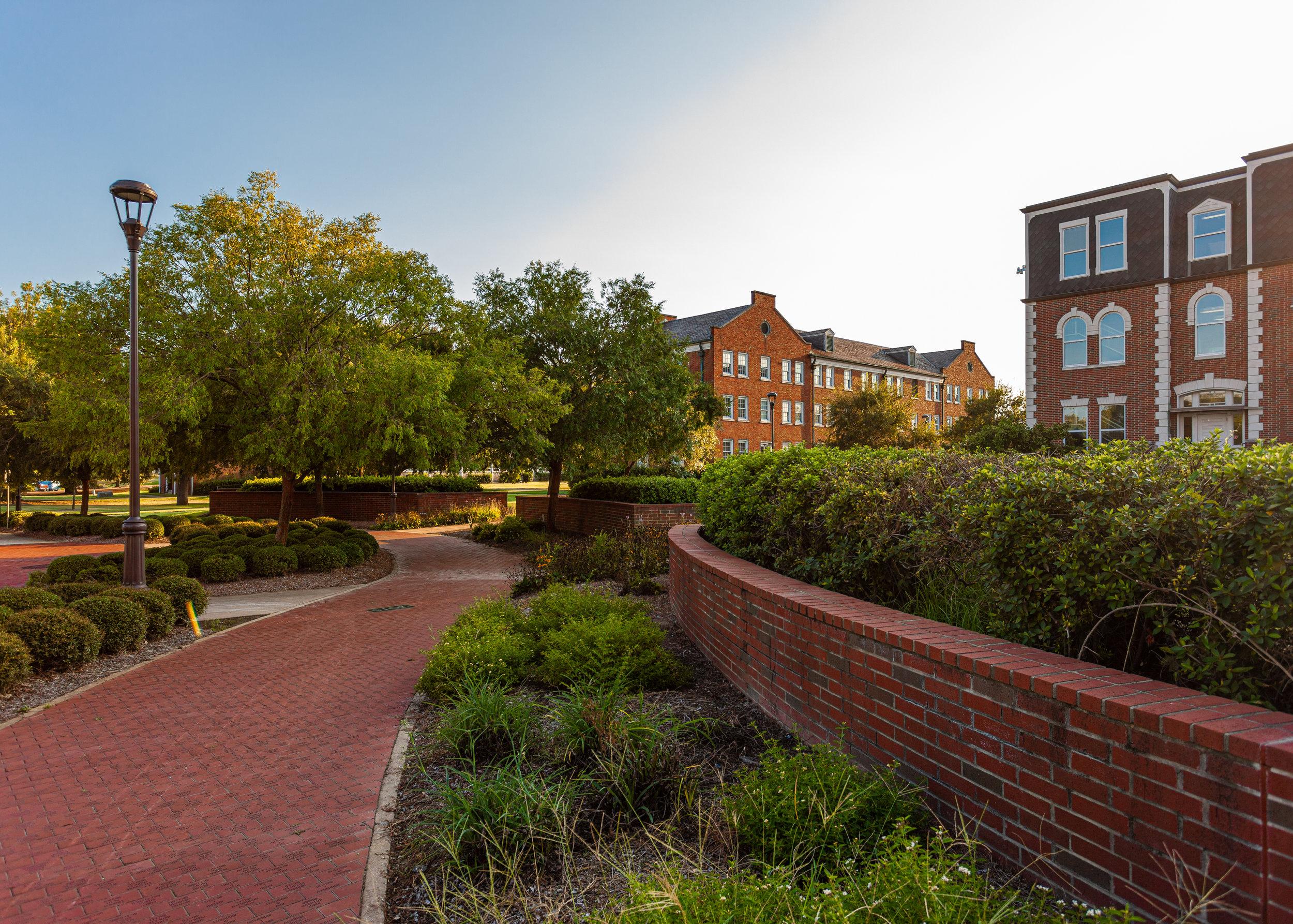 Alumni Bricks Towards Robinson Hall.jpg
