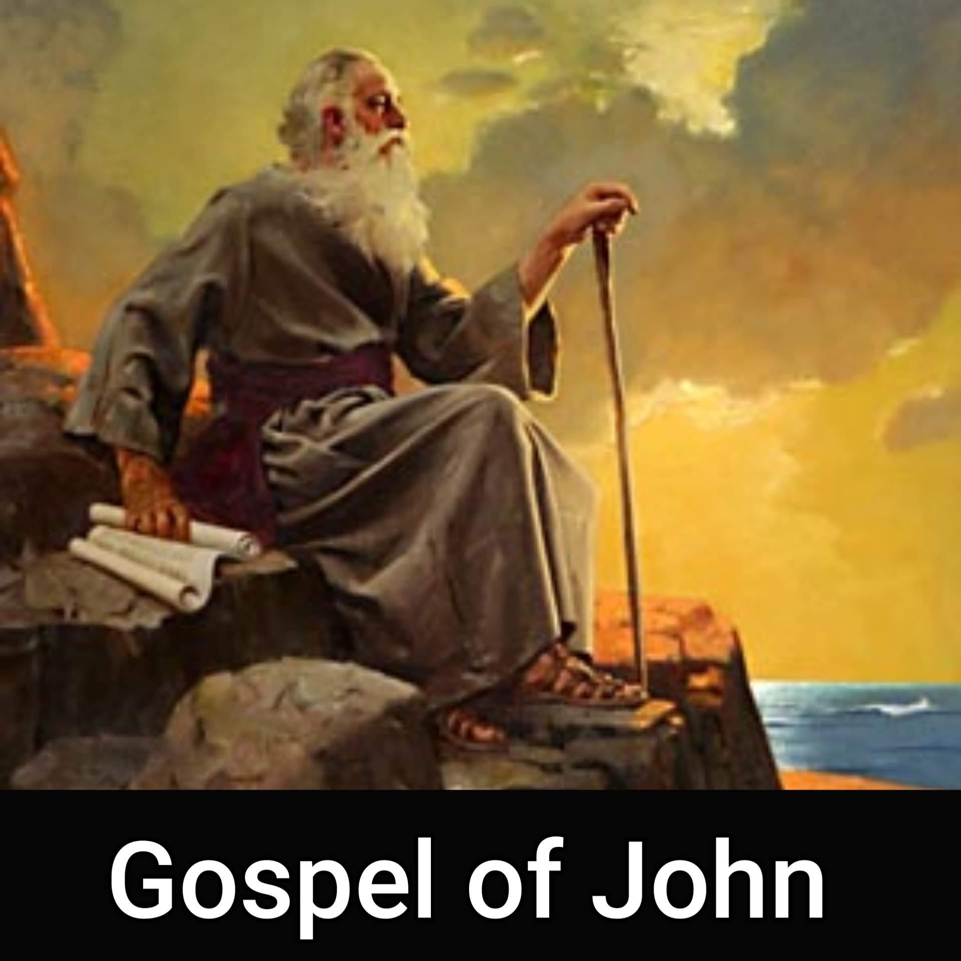 Gospel of John Part 8