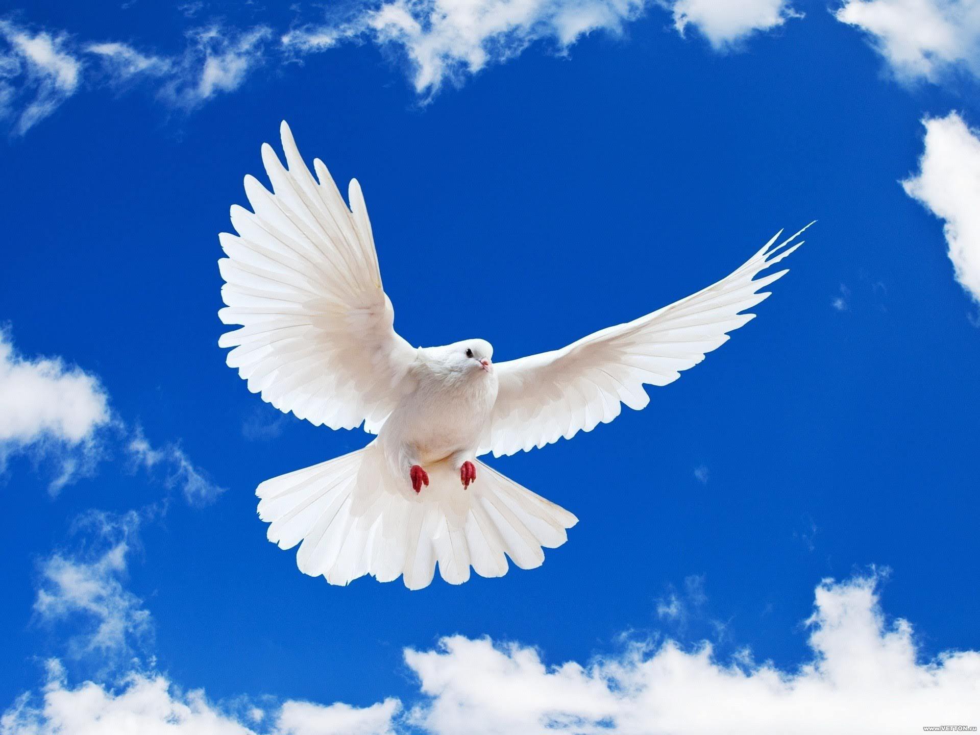 Christian Holidays: Pentecost