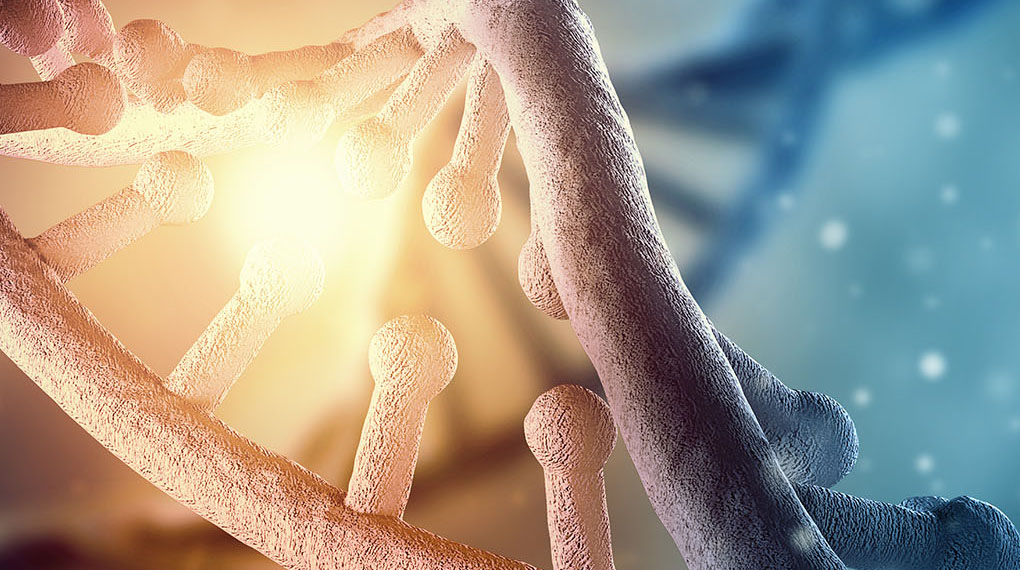 DNA-website-cropped-small-1.jpg