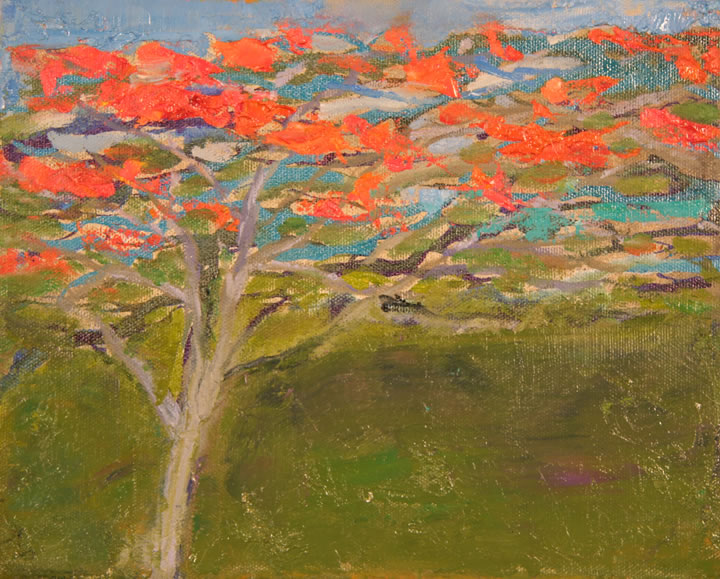 "Jamaica Flame Tree II Oil 8"" x 10"""