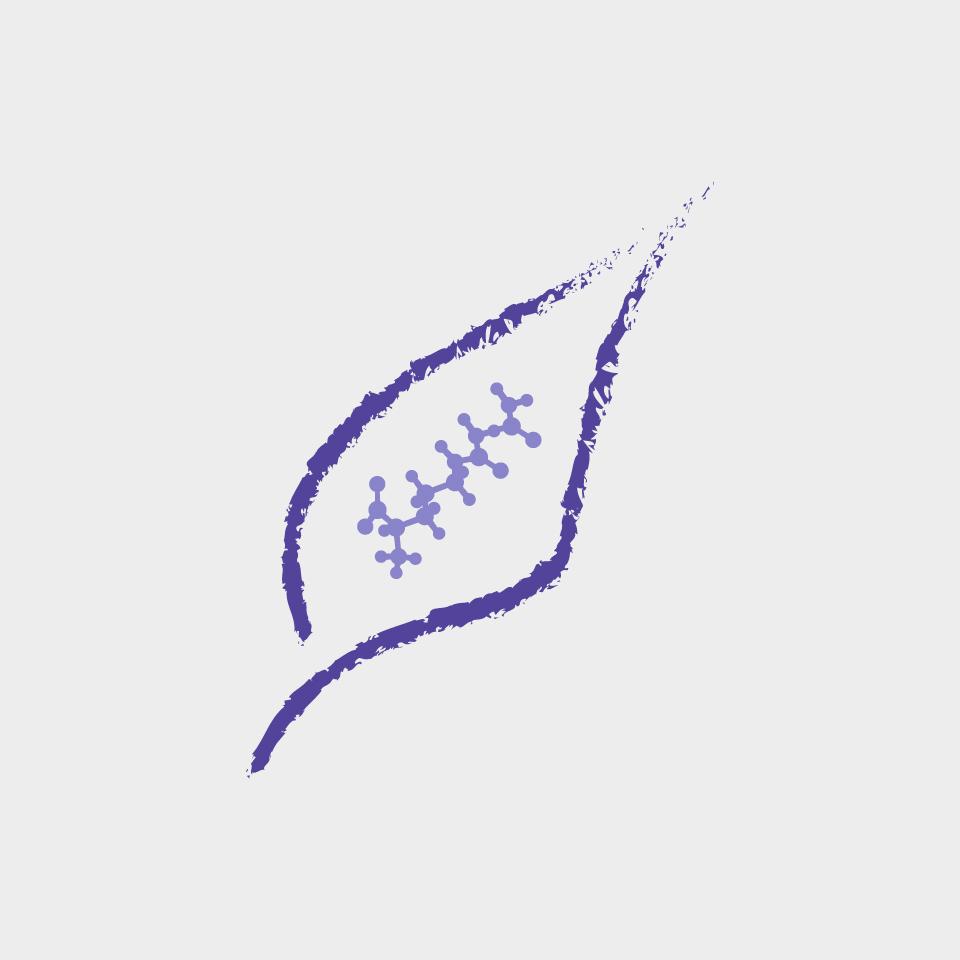 icone-folha-amino-proline.jpg