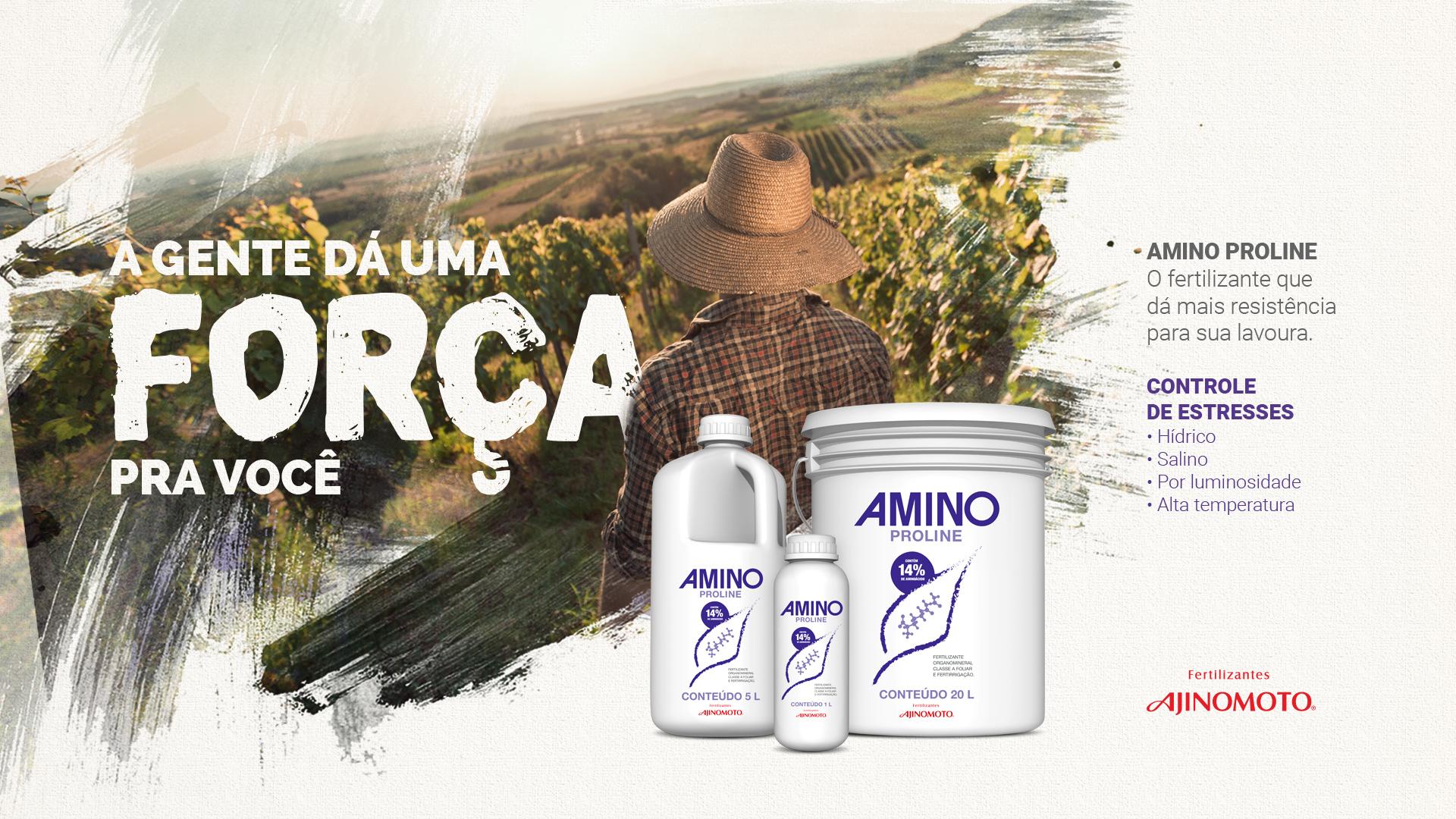 conceito-apresentacao-amino.jpg