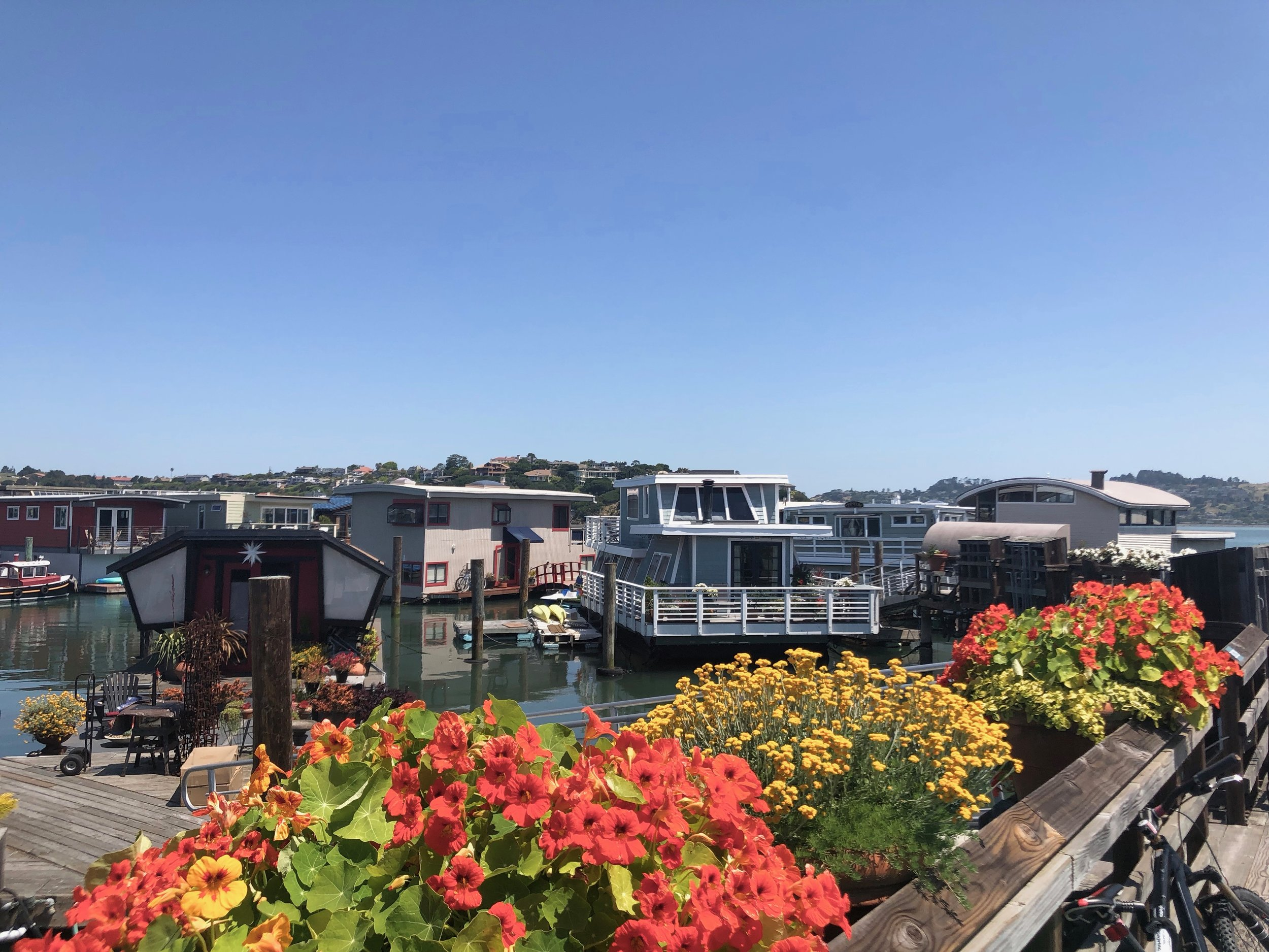 A slice of life in the floating homes community in Sausalito.