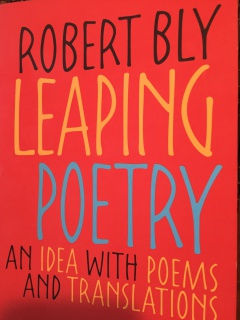 Leaping Poetry.JPG