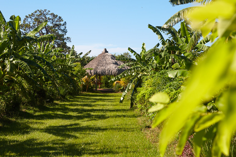 Local Farm Land Preserves Open Space -