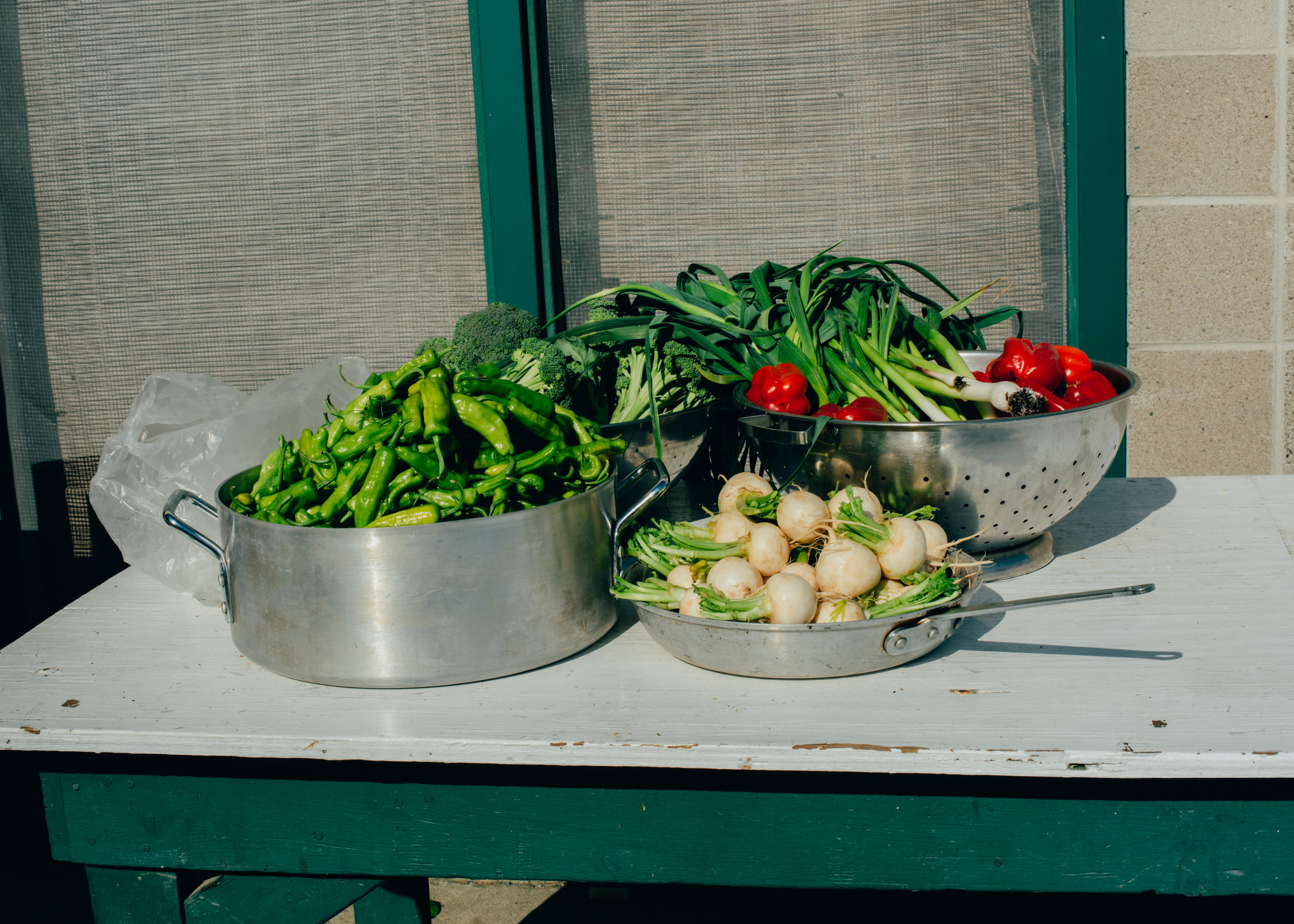Vegetables by DIG -