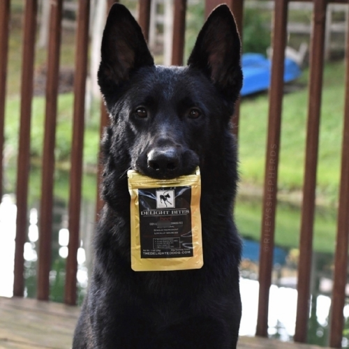 SAFETY RECAP: - FEED AS A TREAT- AS A REWARD OR TOPPING TO YOUR DOGS FOOD.BREAK OR CUT TREATS INTO SMALLER PIECES.MONITOR YOUR PET AROUND OTHER DOGS AND WHILE THEY ARE ALONE WHEN FEEDING THEM ANY TREAT TO HELP AVOID A HAZARD.ALWAYS GIVE YOUR DOG PLENTY OF DRINKING WATER WHEN FEEDING TREATS.
