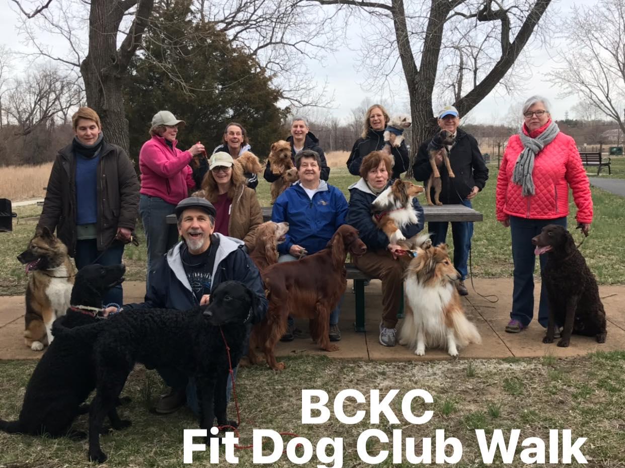 Inaugural Fit Dog walk, March 29, 2019