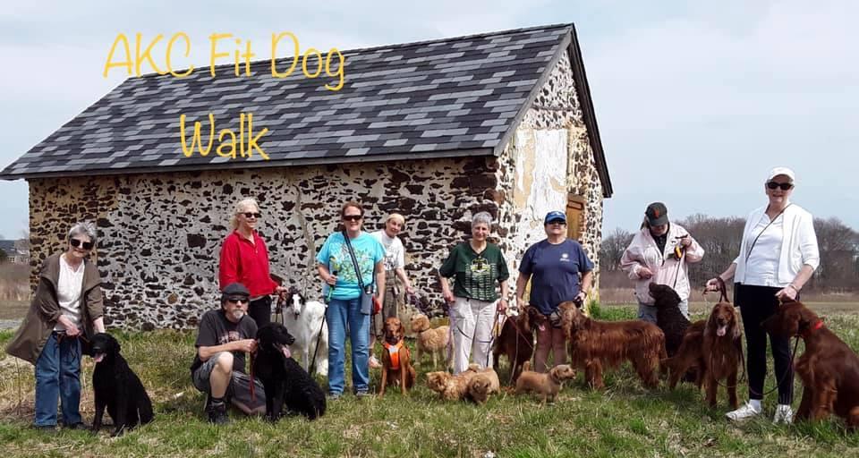 3rd Fit Dog Club walk, April 7, 2019