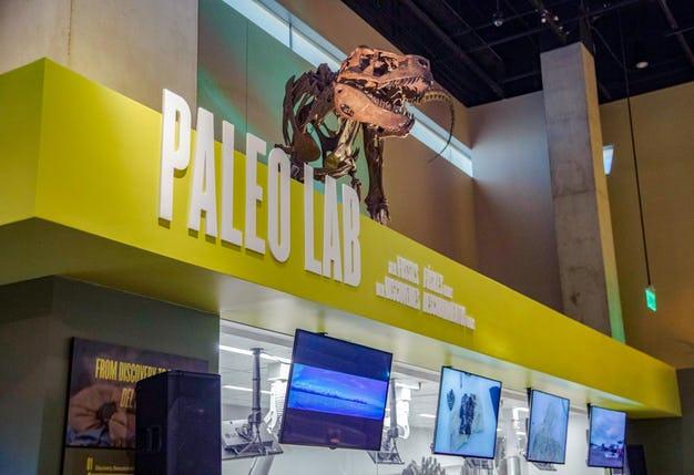 Paleo-Lab-01.jpg