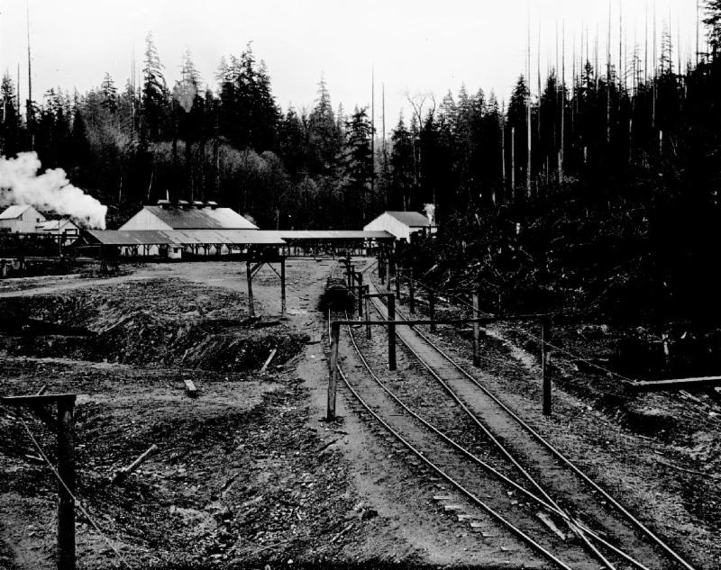 Mining camp at Coal Creek in 1910. (Photo courtesy of City of Seattle Archives.)