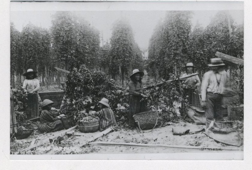 Snoqualmie Valley Hop Farmers and Workers, c. 1890. L88.029.003.7