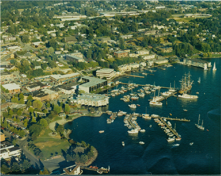 Photograph from 1950 this is an aerial view of the Hilltop Community on the water front. This Photo was originally used in a Scheffer book as well.