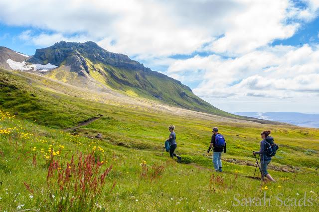 2016_07_Iceland_Web_SS-98.jpg