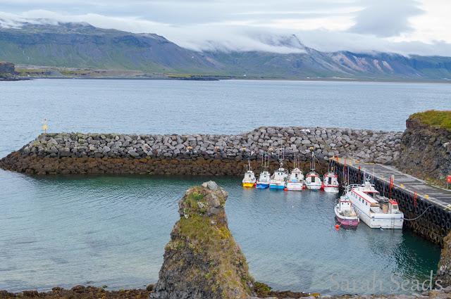 2016_07_Iceland_Web_SS-154.jpg